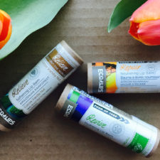 DELISH!  The One World Organic Lip Balms From Eco Lips + You Get 25% Off!